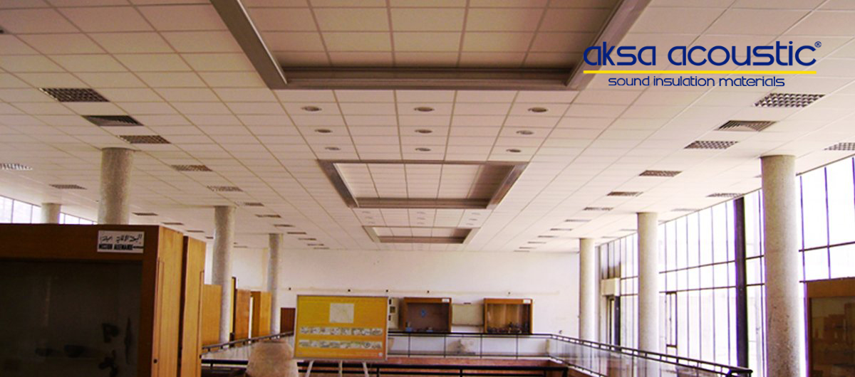 Advance Suspended Ceiling Panels